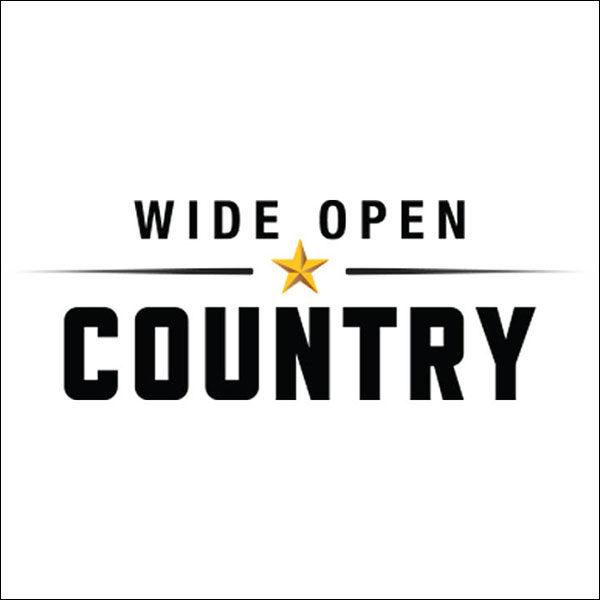 Brigitte DeMeyer - Wide Open Country